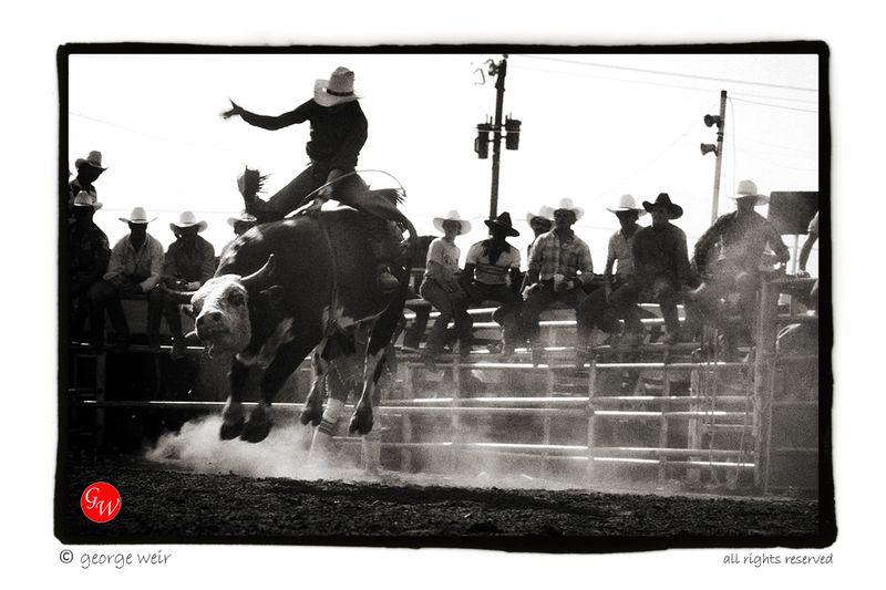 G-weir-west-texas-rodeo