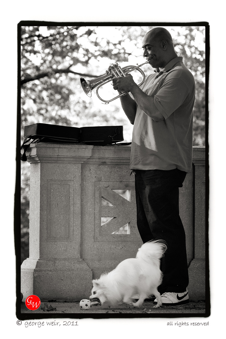 G-weir-fob_trumpet-02